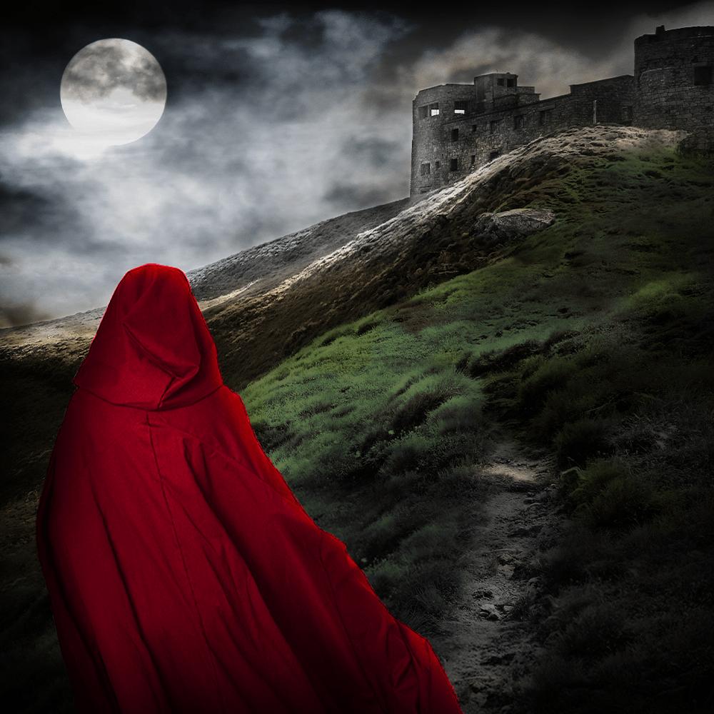 Cover de la serie Les cathares et le Saint Graal disponible sur Sybel