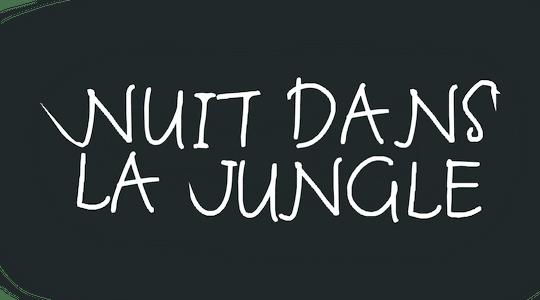 Nuit dans la jungle