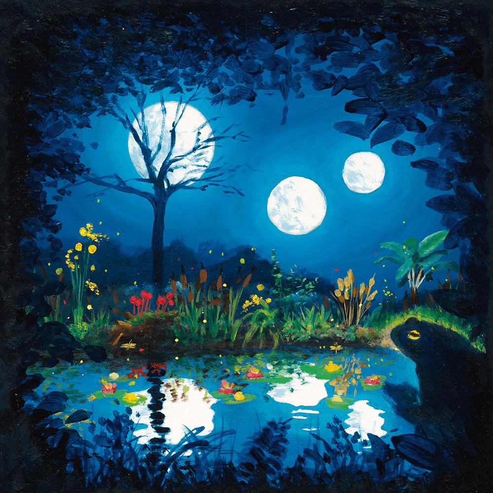 Cover de la serie Le crapaud au pays des trois lunes disponible sur Sybel