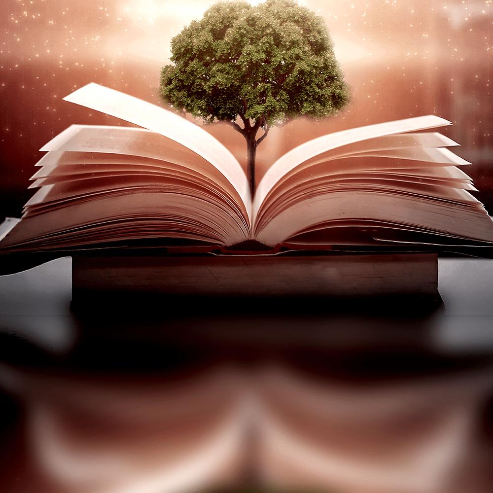 Cover de la serie 50 poèmes classiques disponible sur Sybel